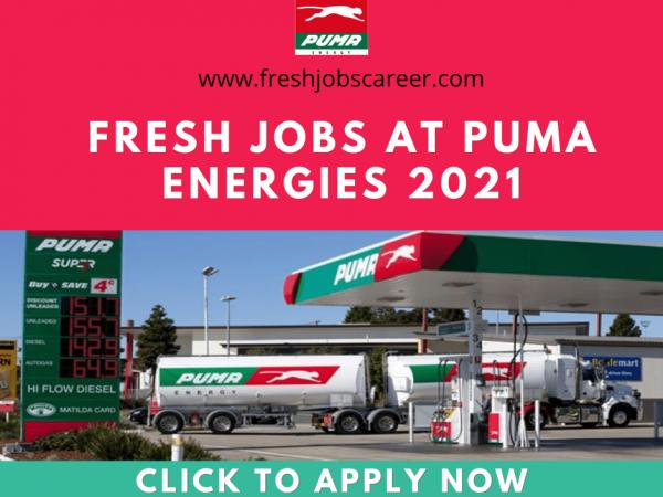 Puma Careers and Jobs Vacancies 2021