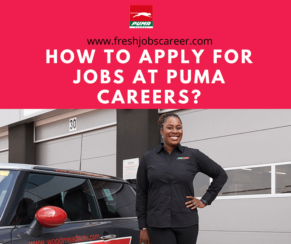 How to apply for Puma Energies Careers and Jobs 2021?